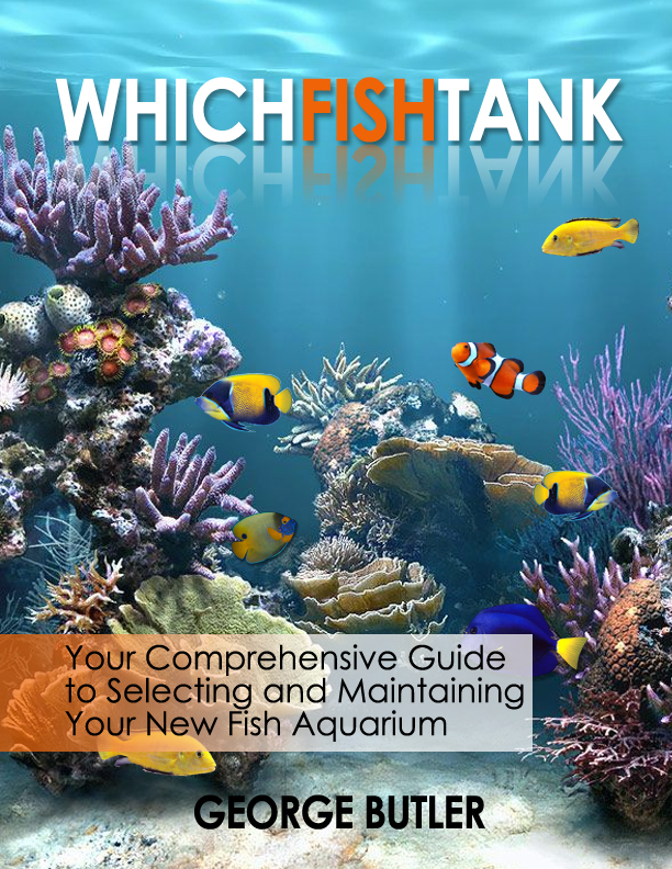 Which fish tank for Book with fish on cover